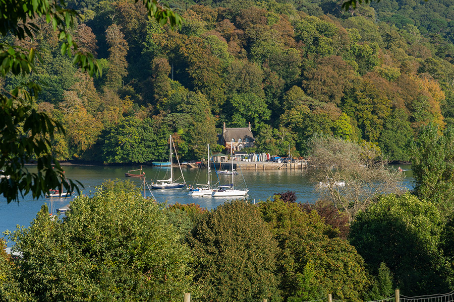 Greenway on the River Dart