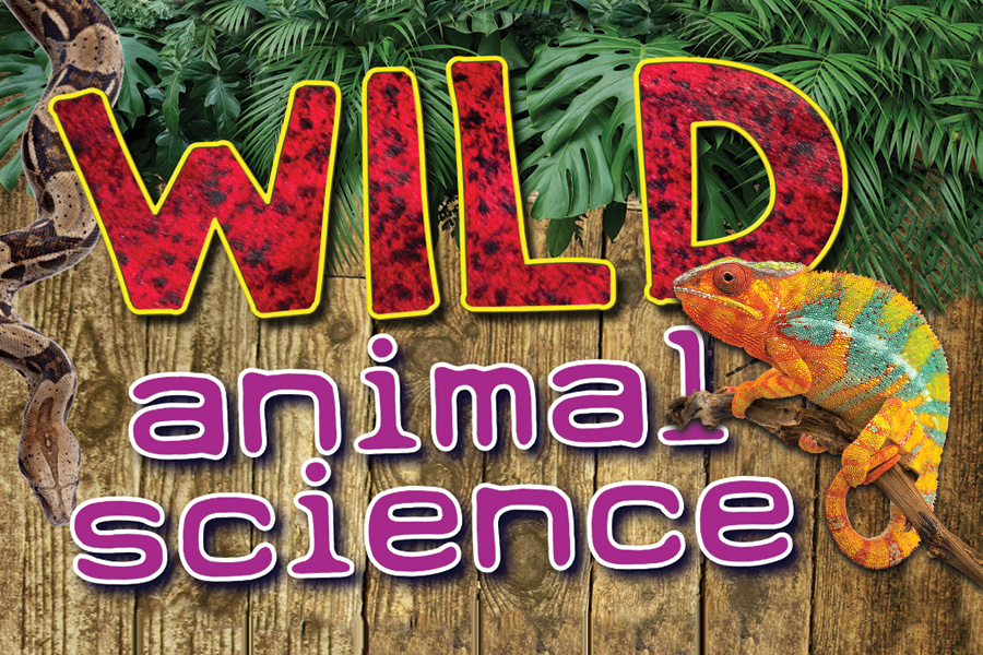 wild animal science tour